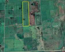 Vendo Campo Agrícola 37 Has.