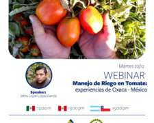 Manejo del Riego en Tomate