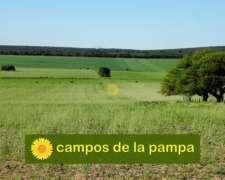 La Pampa - Venta muy Buen Campo 600 Ha Toay