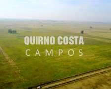 Quirno Costa Campos Vende Chacra 83 Has Mixta en Suipacha