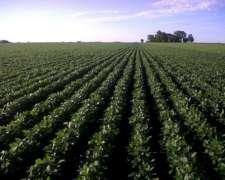130 Ha Agricolas Casalegno