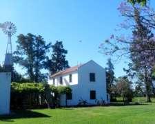Campo en Venta Baradero. 45 Has. Agrícola.casco/arboleda