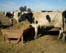 Comedero Madera Movil Vacas X 5m Silo 20 Cabezas Tambo 2019