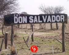 En Venta, 2.500 Has. Conhelo -LA Pampa -