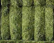 Venta Megafardos de Alfalfa