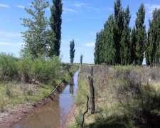 Campo Sobre Ruta Nacional en el SUR de Mendoza