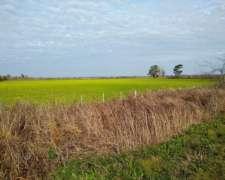 Campo Agricola 4 Hectareas Entre Monje y Diaz Sobre Ruta