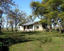 Ba2161 700 Has. Venta Campo Mixto Lincoln