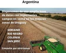 Venta de Campos en Uruguay