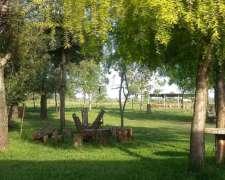 Chacra/campo Restorant De Campo