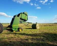 Rollos de Alfalfa y Cebadilla