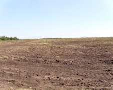 Campo Hubicado en Malbram