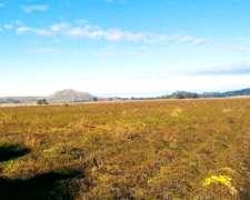 Campo - 115 Hectareas - Balcarce - Agricola - Papero
