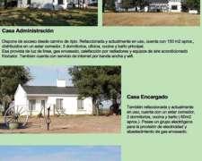Vende Campo en Villa Elisa 2160 Has