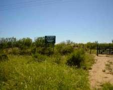 Norte Cordoba Campo Ganadero 1000 Ha o MAS Sobre la Ruta N60