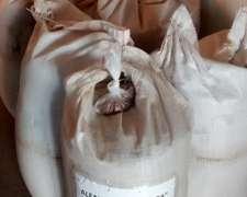 Semillas de Alfalfa la Tijereta Grupo 6