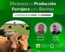 Eficiencia en Producción Forrajera para Bovinos