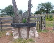 Campo Ganadero Chuña 1150 Hect