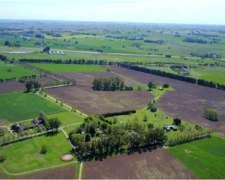 Estancia en SA Areco. 208 Has. a 1 km de Rn8. Ideal Haras
