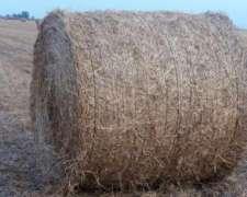 Rollos De Pasto Con Fibra