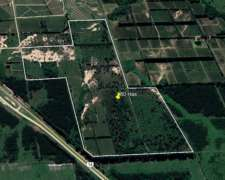 Campo Forestal Sobre Autovía Nacional 14