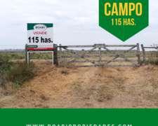 Vendo 115 Has Agrícolas a 4 km de Ruta