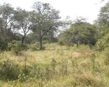800 Hectareas Ganaderas En Villaguay
