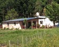 Campo en Venta, Concordia Entre Ríos, 142 Has.
