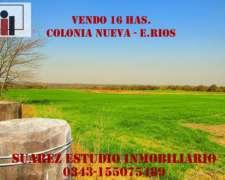 Vendo 16 Has. en Colonia Nueva. Departamento Paraná