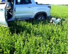 Vendo 3600 Has con 1500 Agricolas Ing. Luiggi la Pampa