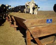 Comedero Madera Dura Movil Para 20 Vacas X 5m C/patines