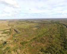 Venta. 2460 Has. Islas del Ibicuy - Entre Ríos