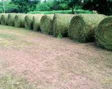 Rollos Y Fardos De Alfalfa Nuevos