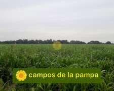 La Pampa - Venta 60ha Cultivables Zona Anguil