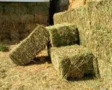 Fardos De Alfalfa Calidad Premium - Campos Del Oeste Alfalfa