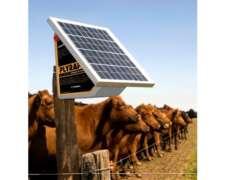Electrificador Compacto Solar Plyrap Solar 45