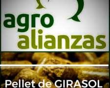 Pellet de Girasol Integral - Disponible