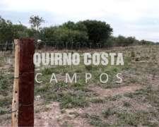 Quirno Costa Campos Vende 6.800 Has en las Lomitas, Formosa