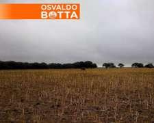 135 Has Paraje el Guanaco, la Pampa