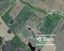 330 Has. Campo Mixto a 80km del Puerto de Necochea