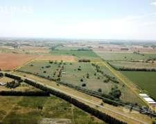 57 Ha - Campo Sobre Ruta en Chenaut