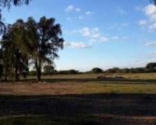 Campo en Venta - San Luis - las Zanjitas