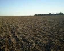 Alquilo Estancia Agricola para el 2023 en Quemu 1.650 Has