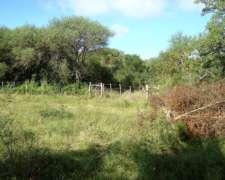 400 Hectareas de Campo Mixto