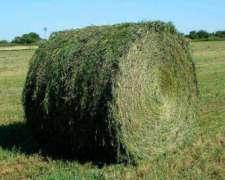 Rollos De Alfalfa 100%