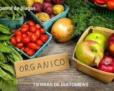 Tierras De Diatomeas Y Fertilizantes Mineral