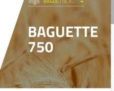 Semilla Trigo Baguette 750 Nidera Bb