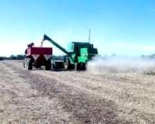 Vendo 112 Has Campo 100% Agricola Zona Galvez