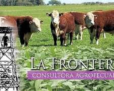 La Frontera Consultora Agropecuaria - Ings. Agrs.