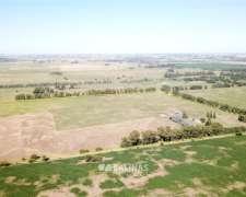 45 Has. Campo Agrícola Cerca del Polo Industrial